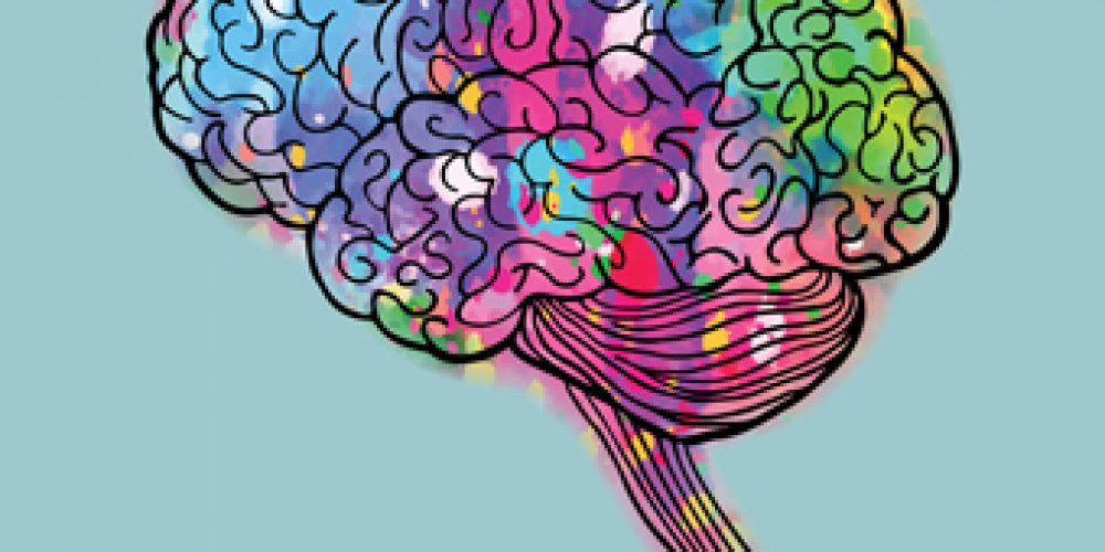 Get Excited about the Brain!