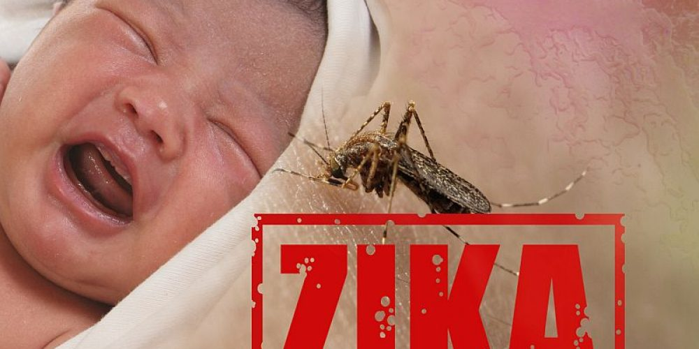Zika Virus Tied to Profound Developmental Delays