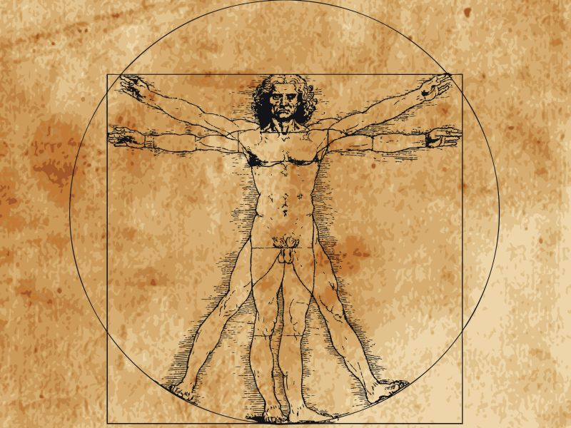 News Picture: Leonardo's 'Vitruvian Man' Ideal Isn't Far Off Modern Measures