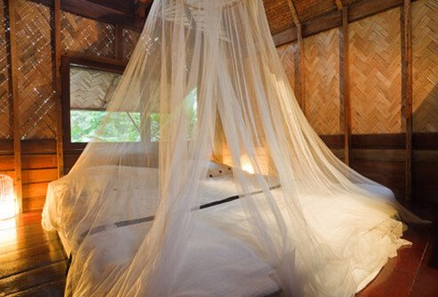 Picture of Malaria Precautions